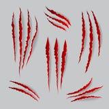 Marcas de las garras del gato del vector fijadas ilustración del vector