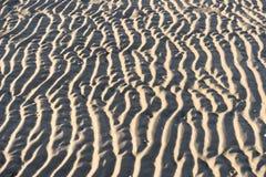 Marcas de ondinha na ilha norte Amrum do Frisian Fotografia de Stock