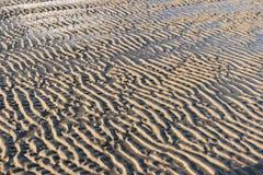 Marcas de ondinha na ilha norte Amrum do Frisian Imagem de Stock Royalty Free