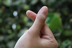 Marcas del amor con los fingeres en naturaleza imagen de archivo libre de regalías