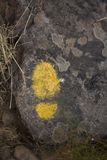 Marcas a lo largo de una pista de senderismo Imagen de archivo