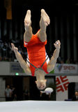 Marcel Nguyen. Germany's Marcel Nguyen during a qualifying competition for the 2012 Olympic games in London England Stock Photos