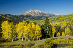 Marcelina Mountain from Kebler Pass. Morning light on Marcelina Mountain during fall Royalty Free Stock Images