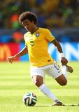 Marcelo Coupe du Monde 2014 Stock Photos