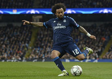 Marcelo Stock Photos