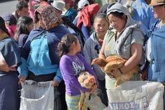 Marché animal dans Otavalo, Equateur Image libre de droits