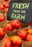 Marché d'agriculteurs image libre de droits
