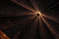 Marché d'arbre de Noël d'une autre perspective Photographie stock libre de droits
