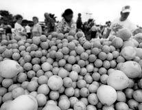 Marché de fermiers image stock