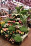 Marché de fleur d'Amsterdam Photos stock