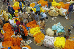 marché de fleur de Calcutta Photo stock
