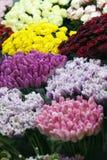 Marché de fleurs Image libre de droits