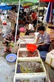 Marché de fruits de mer Photographie stock