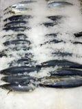 Marché de glace de poissons image stock