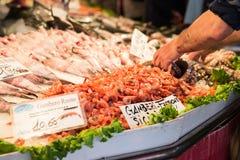 Marché de poisson frais italien à Venise, Italie photos libres de droits