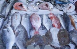 Marché de poissons à Hong Kong Image libre de droits
