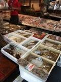 Marché de poissons de Tokyo Photographie stock libre de droits