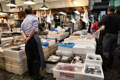 Marché de poissons de Tsukiji Image libre de droits