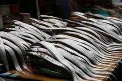Marché de poissons en Corée du Sud Images libres de droits