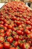Marché en plein air de la Provence de tomates Photographie stock libre de droits