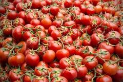 Marché en plein air de tomates Provence Image libre de droits