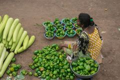 Marché Mysore, Inde de Devraj Images libres de droits