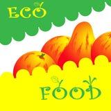 Marché organique Logo Template Products Icon de nourriture biologique d'Eco Image libre de droits