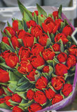 Marché rouge Amsterdam Holland Netherlands de fleur de tulipes Image libre de droits