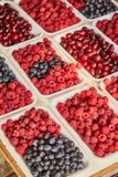 marché Vente des baies Vente de framboise dans des plateaux photo libre de droits