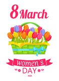 8 March Basket and Tulips Vector Illustration. 8 March, womens day, poster with basket, of green color with ribbon, and tulips inside, celebration and greetings Stock Photos
