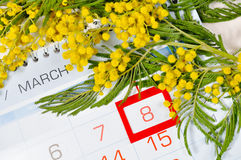8 March card - mimosa flowers over the calendar with framed 8 March date. 8 March postcard - mimosa flowers branch over the calendar with framed 8 March date Royalty Free Stock Photography