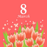 8 March card with tulips bouquet on pink background. Vector illustrations of 8 March card with cartoon tulips bouquet on pink background Royalty Free Stock Photo