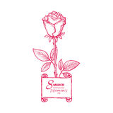 8 march card. 8 march. Woman`s day greeting card with red rose, template vector illustration