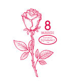 8 march card. 8 march. Woman`s day greeting card with red rose, template Royalty Free Illustration