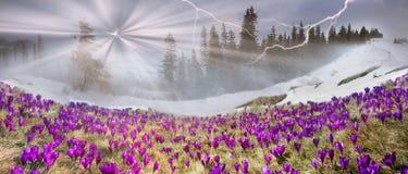 March Carpathians Stock Photography