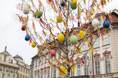 MARCH 25, 2016: Decorated birch tree at the traditional Easter markets on Old Towns Square in Prague, Czech republic Stock Image