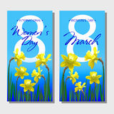 8 March Design card set with flowers narcissus. International Women`s Day Background. Vector illustration Stock Photos