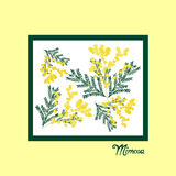 8 March greeting card. International women`s day. Hand drawn flowers mimosa. 8 March greeting card. International women`s day. Calligraphic hand written phrase Stock Image