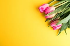 8 March Happy Women`s Day concept. With wooden block calendar and pink tulips on yellow background. Copy space Royalty Free Stock Image