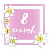 8 march holiday postcard with daffodils. Royalty Free Stock Image