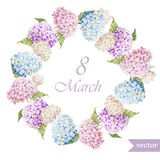 March 8, hydrangea, wreath, flowers3 Stock Image