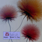 8 March, International Women's Day, greeting card. EPS10  illustration Royalty Free Stock Image