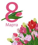 March 8 International Women`s Day greeting card template with flowers. Background with tulips and text in Russian March 8. Vector. Illustration vector illustration