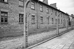 March of the living. Oswiecim concentration camp Stock Images