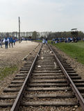 March of the Living in german Concentration Camp in Auschwitz Royalty Free Stock Photo