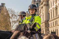 Mounted female Police officer in parliament square London royalty free stock image