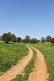 March, the rural dirt road Stock Image
