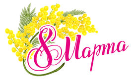 March 8 Russian lettering text. March 8 International Womens Day. Yellow mimosa flower. Mimosa flower symbol of Womens Day Royalty Free Stock Photo