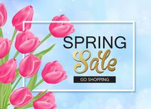 8 march spring banner with pink tulips. 8 march day spring banner with pink tulips Stock Images