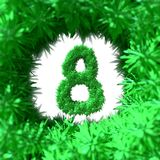8 March symbol eight made of foliage leaf fur flying in the space and round by frame. Can be used as a decorative greeting grungy Royalty Free Stock Photo